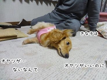 kinako2670.jpg