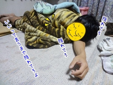kinako2693.jpg