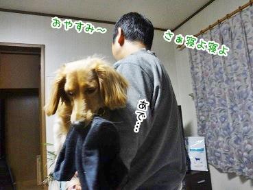 kinako2726.jpg
