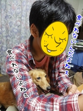 kinako2733.jpg