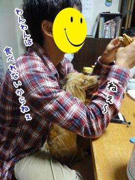 kinako2735.jpg