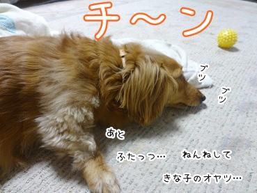 kinako2743.jpg