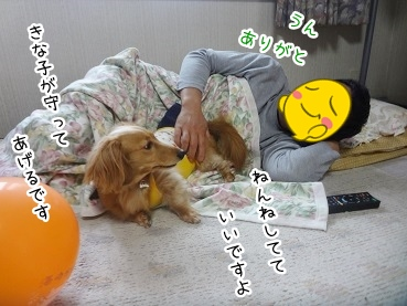 kinako2757.jpg