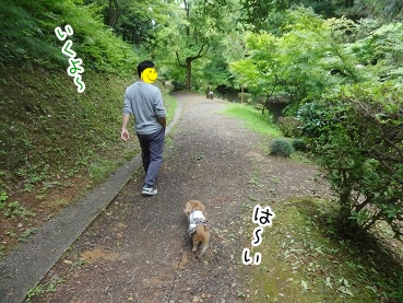 kinako2791.jpg