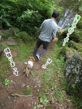 kinako2792.jpg