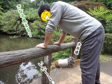 kinako2794.jpg