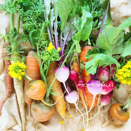 ミニ野菜のコピー