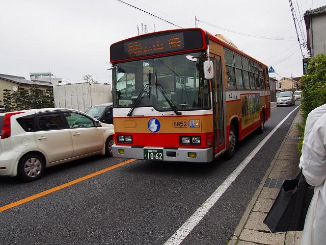 P4290208s-.jpg