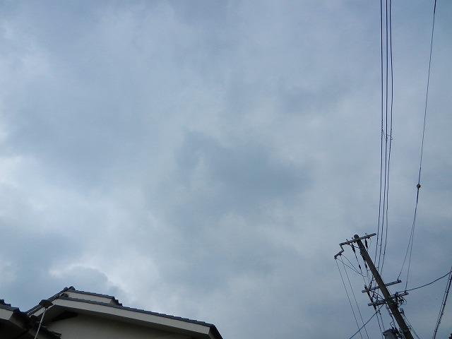 s-DSCN0124.jpg