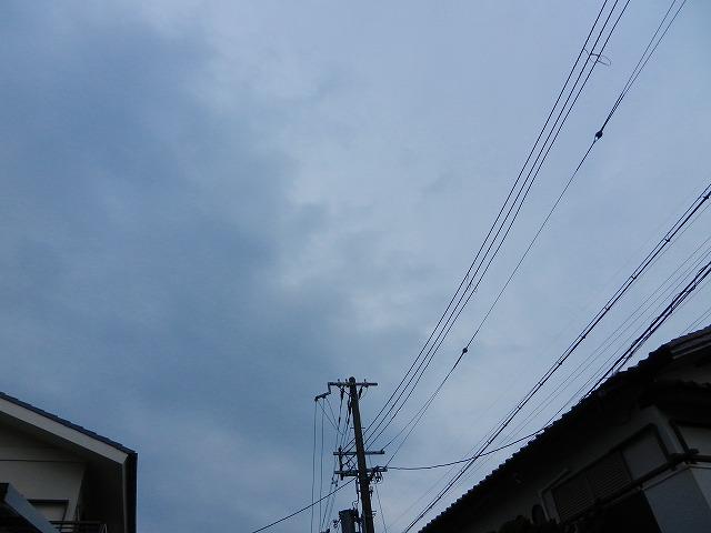 s-DSCN9584.jpg