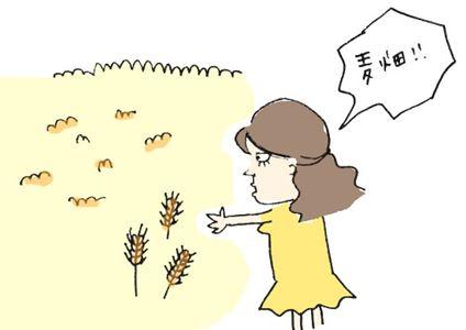 mugibatake_R.jpg