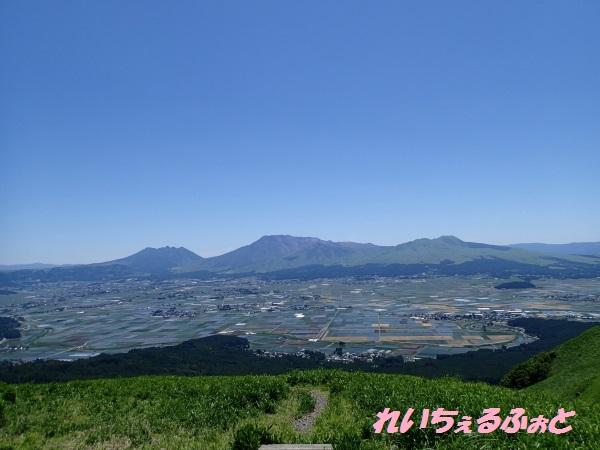 DPP_8618.jpg