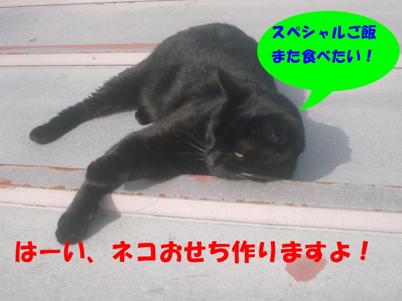 高松通信2