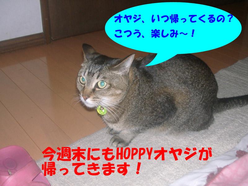 高松通信3