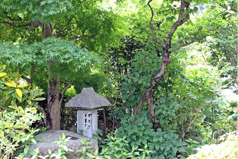 nobunobu12300111.jpg