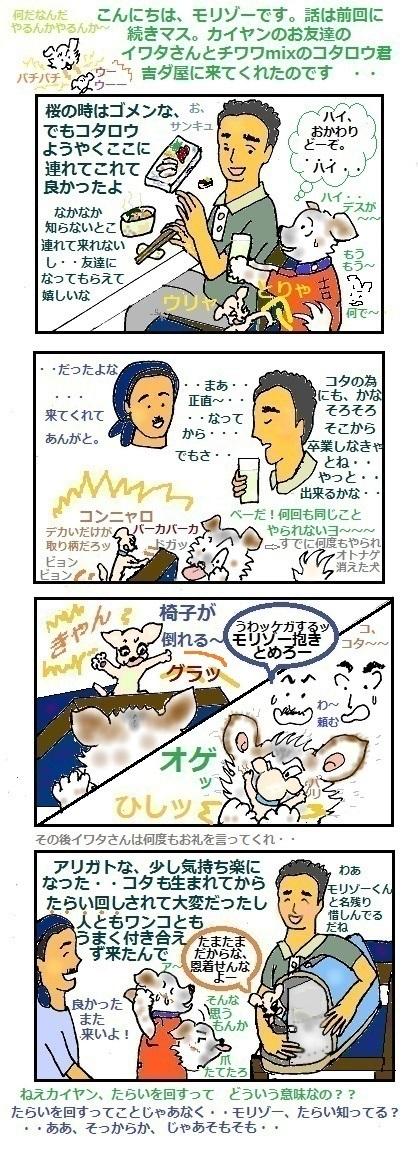 モリゾーちん116 イワタさんとコタ②
