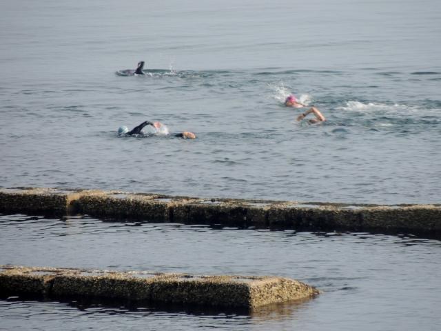 N6098泳ぐ