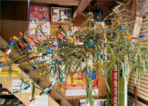 05 500 20150616 七夕の竹from増井03