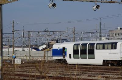 s-IMGP0716.jpg