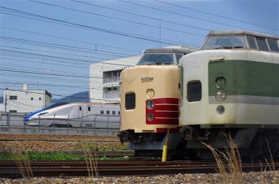 s-IMGP4355.jpg