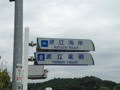 波立薬師寺の紫陽花ポタ・25