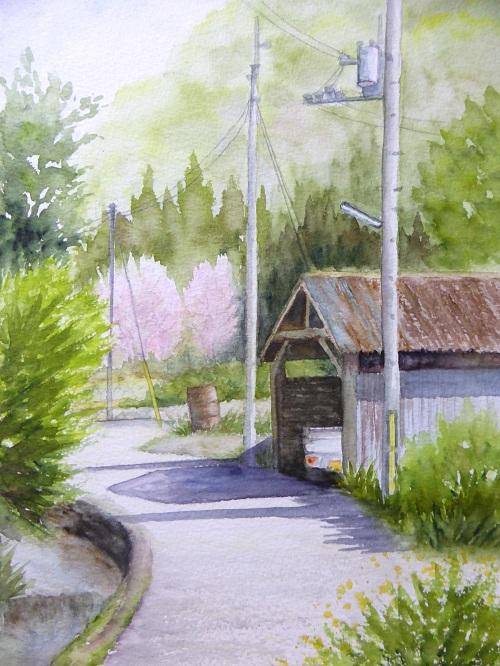 山の辺の道桜