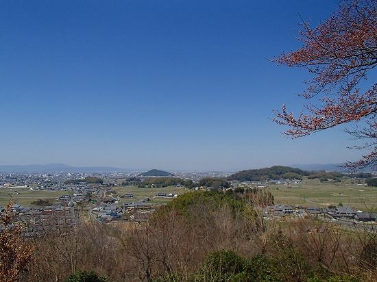 P3280079.jpg