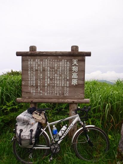 P8080425.jpg