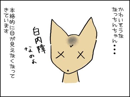 345白内障-1-1