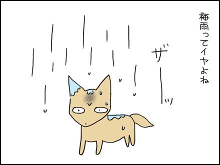 352梅雨-1-1