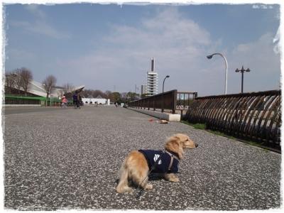 03駒沢ー3