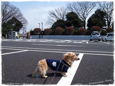 03駒沢ー1