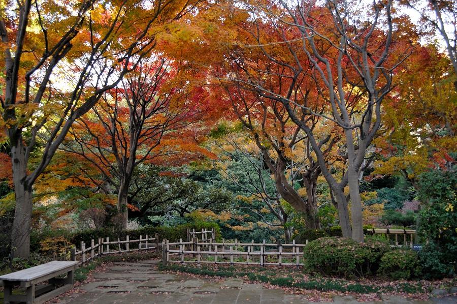 池田山公園_