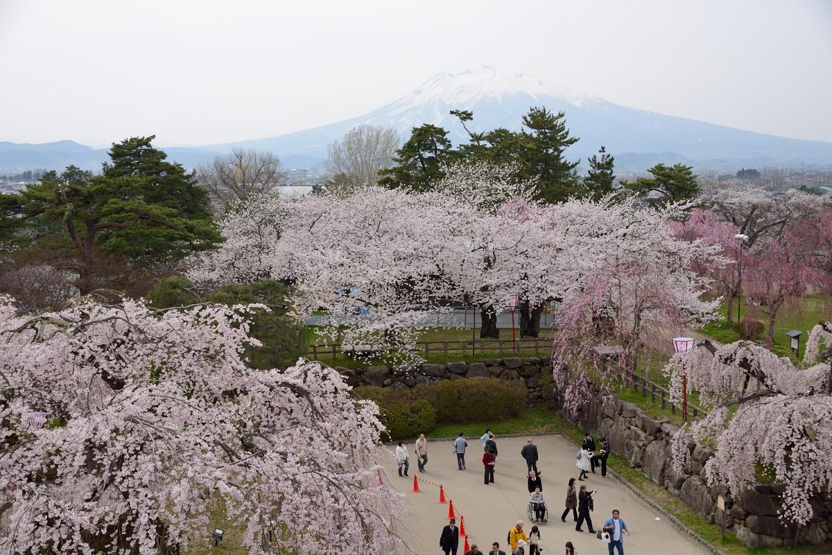 弘前公園__01