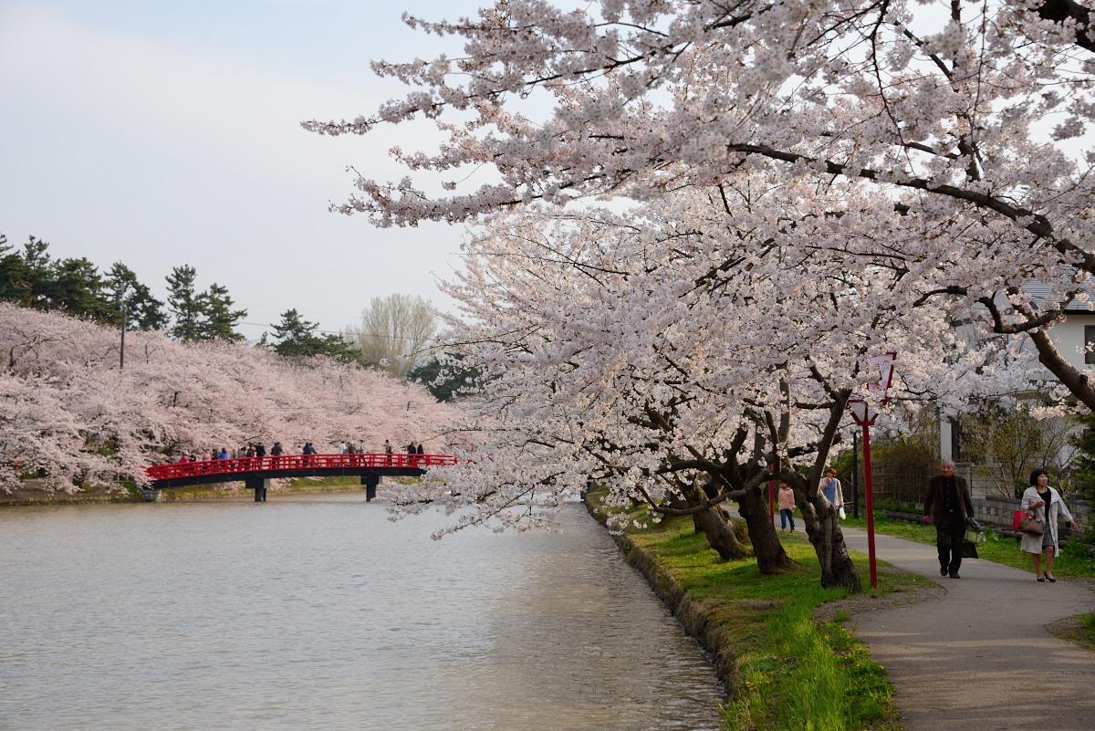 弘前公園__10