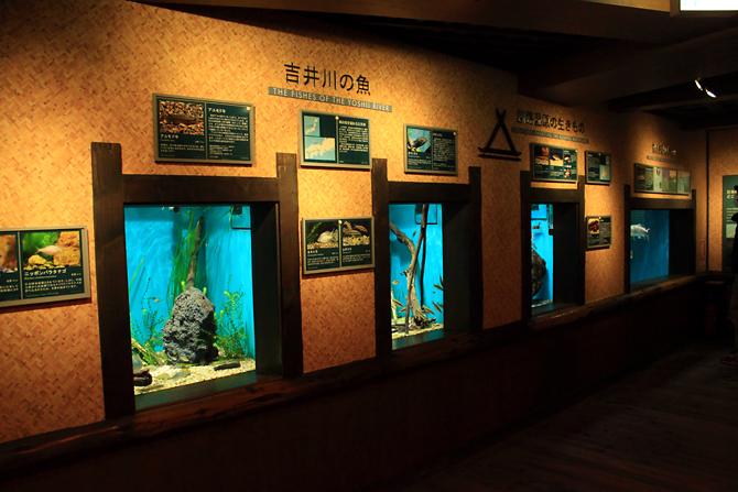 メコン川研究所3