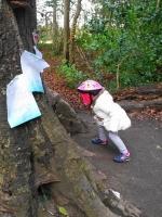 fairyhuntmarleypark8