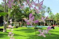 srilanka01155