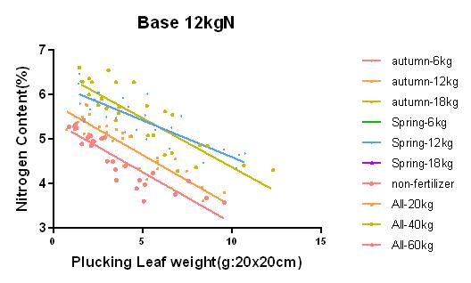 時期量base 12kgN