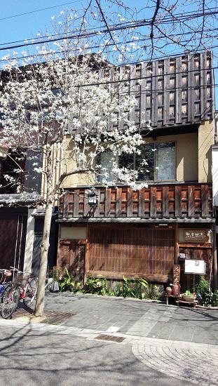 3月京都2