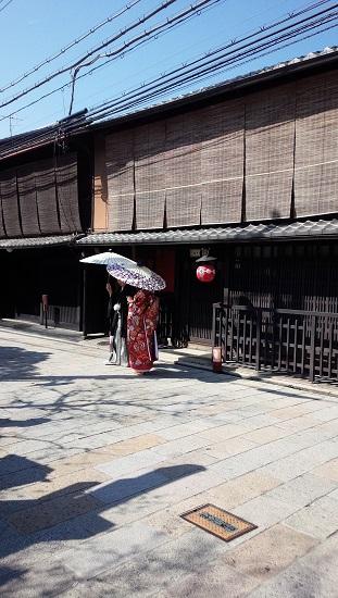 3月京都5
