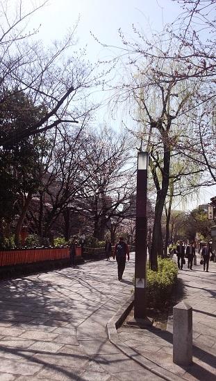 3月京都7