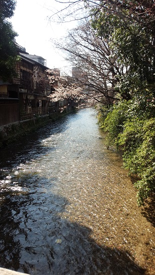 3月京都8