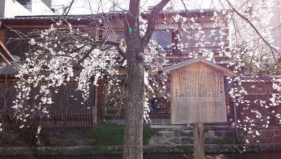 3月京都10