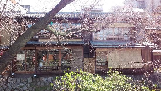 3月京都11