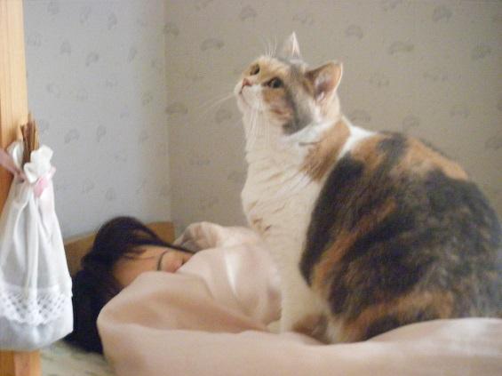 寝てるときも一緒1