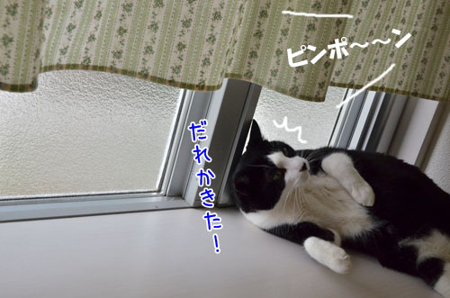 DSC_5168_2.jpg