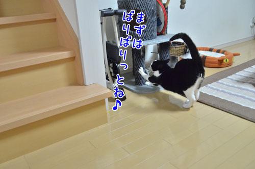 DSC_5265_2.jpg