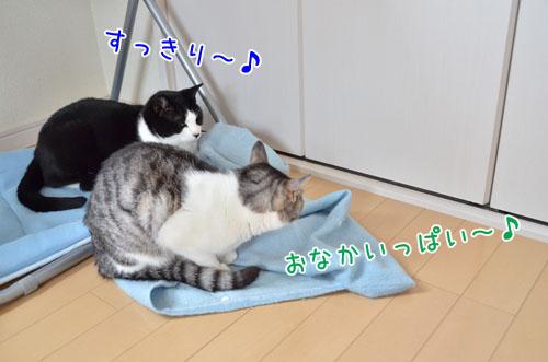 DSC_5348_2.jpg