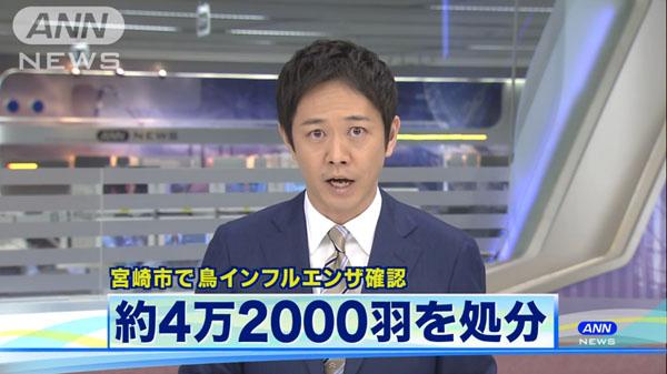 00480_miyazaki_tori_influenza_201412_01.jpg